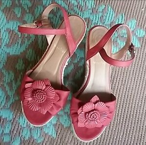 Red wedges with top flower